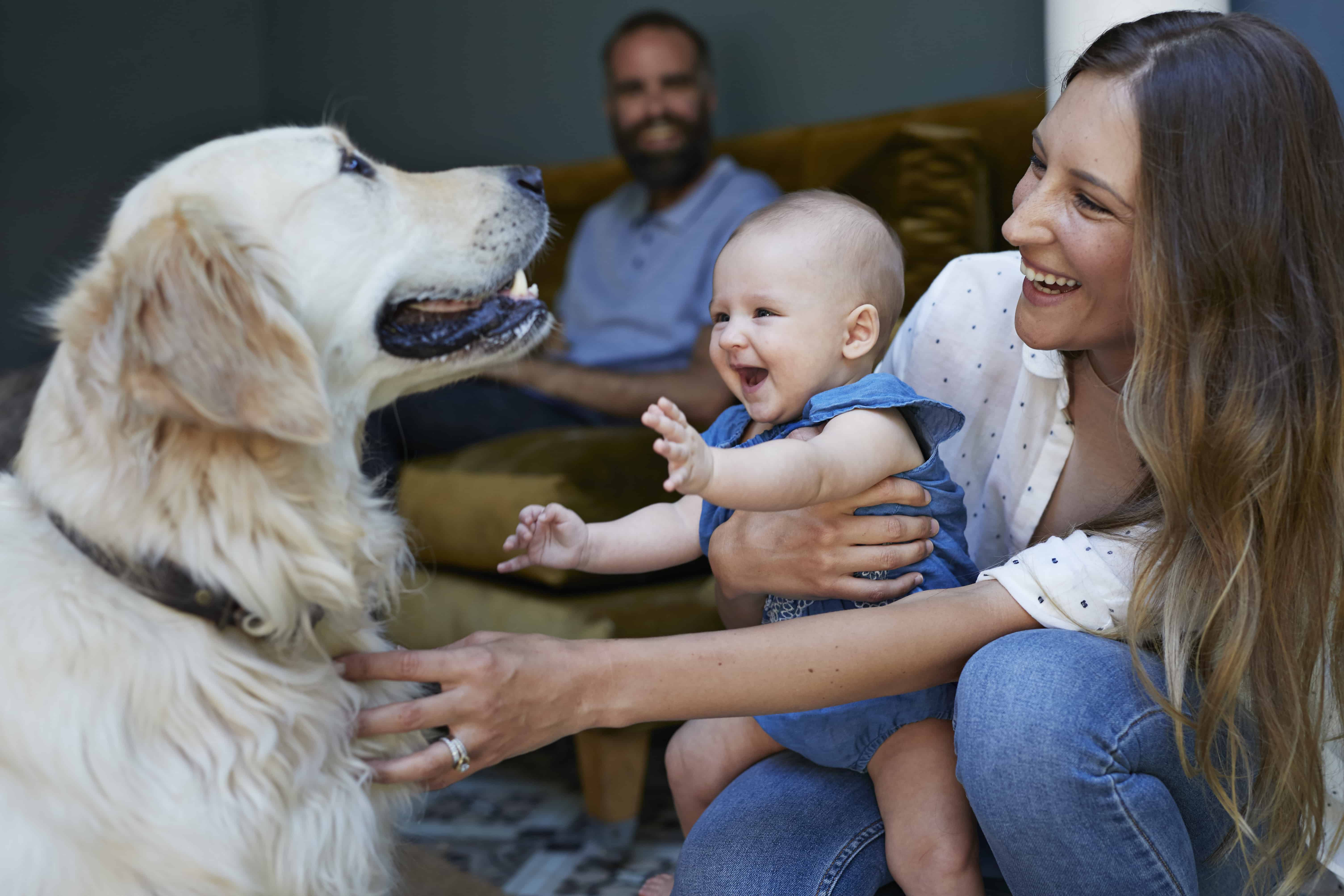 couple with new baby, dog and there are a lot of expenses