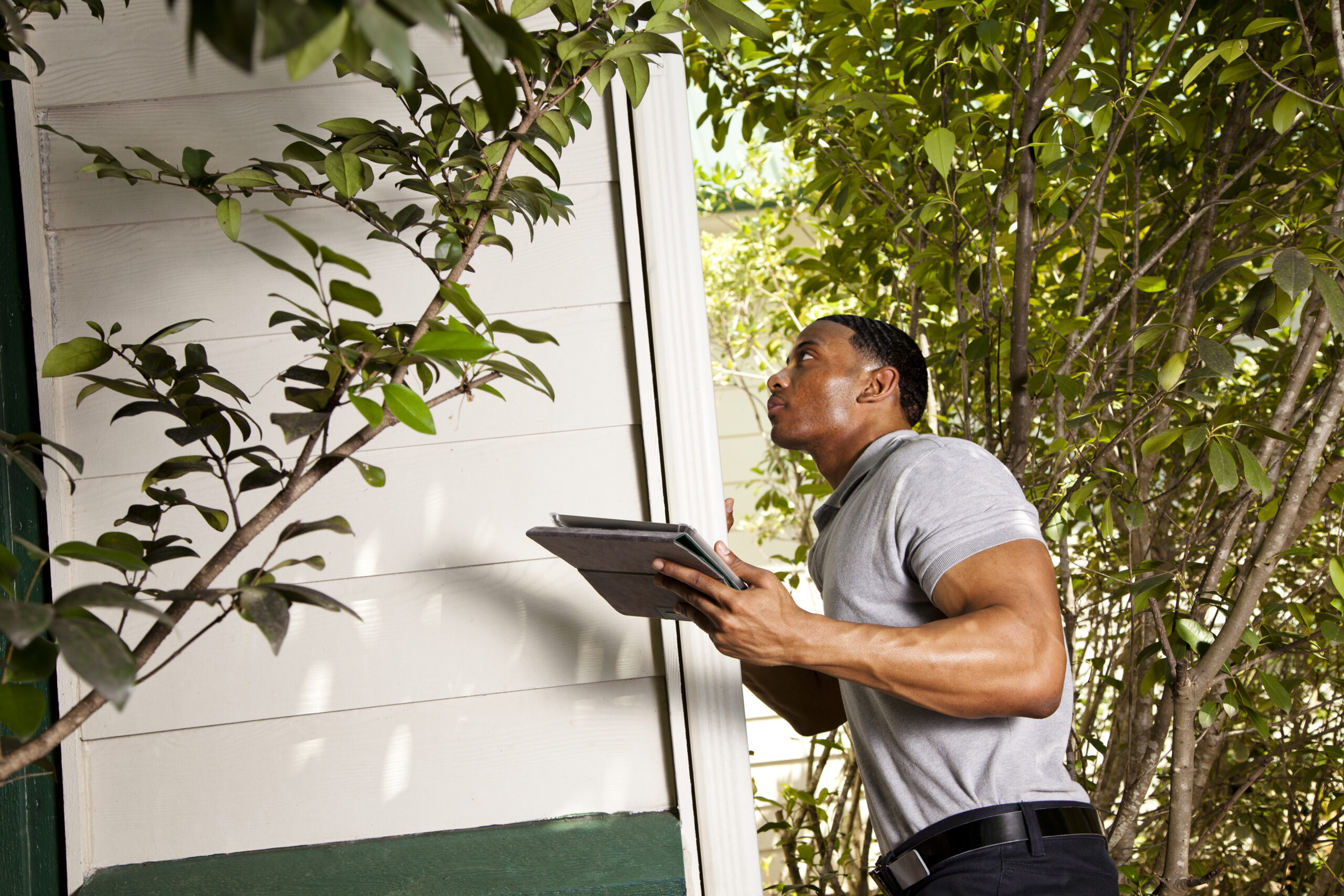 a man doing a pest inspection while holding a notepad